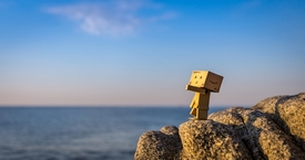 Danbo looks the sunrise